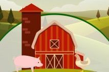 Rodeo & Farm