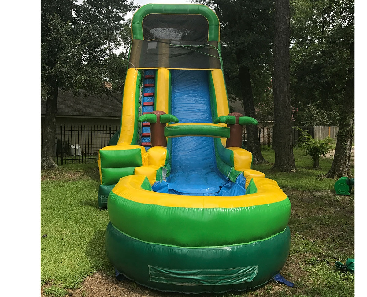 Palm Tree Water Slide For Rent