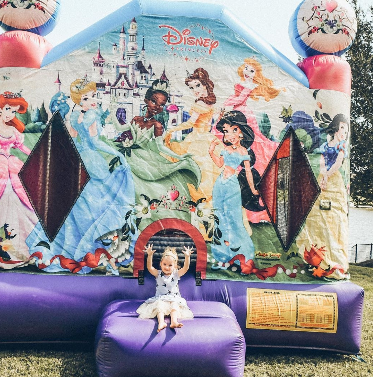 Princess and the Frog Bounce House Houston