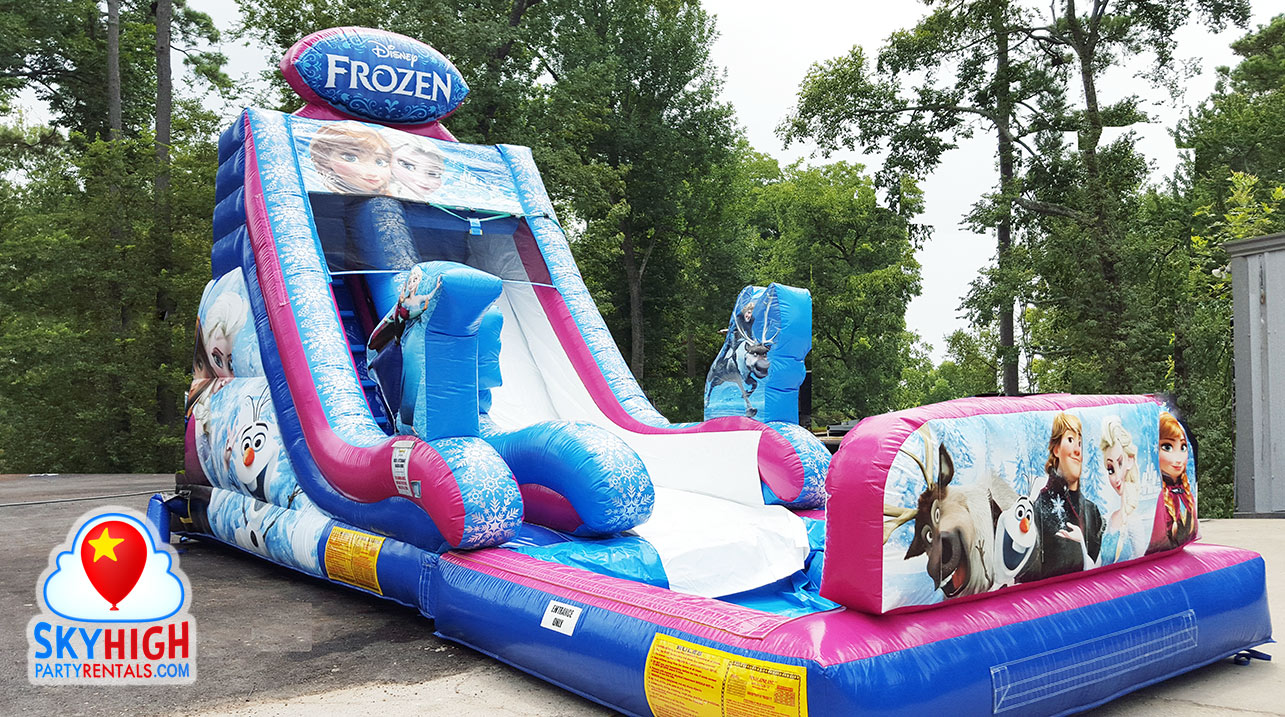 frozen child's birthday party slide