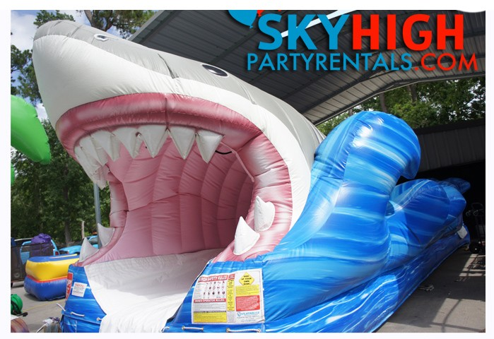 Shark Party Water slide