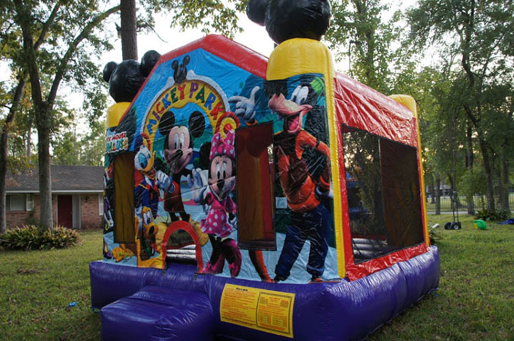 Mickey Bouncy Castle Rental