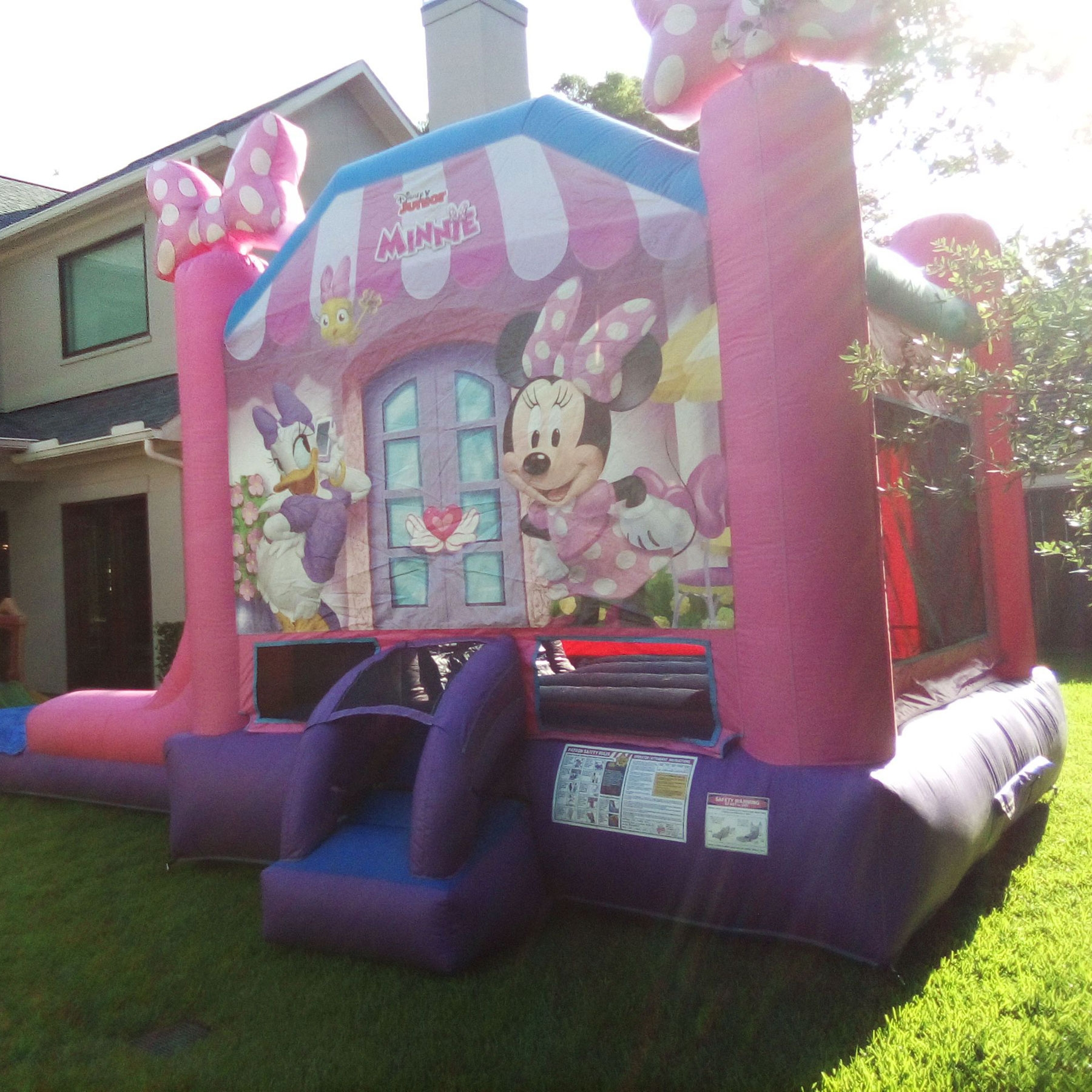 Minnie Mouse Rental Texas