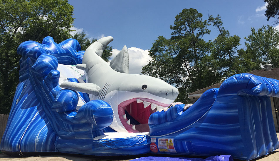 Front View of Shark Slide Rental