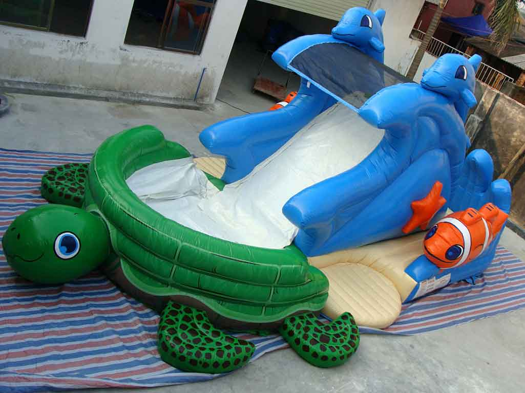 Inflatable Kids Water Slide